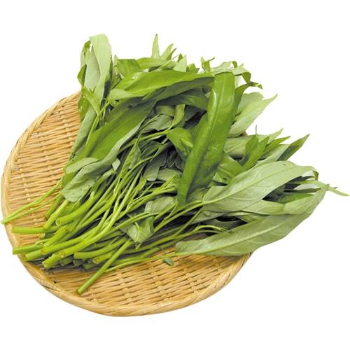 エンツァイ(空心菜) ※有機/農薬不使用