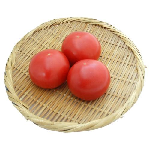 トマト ※有機/農薬不使用