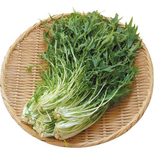 水菜 ※有機/農薬不使用