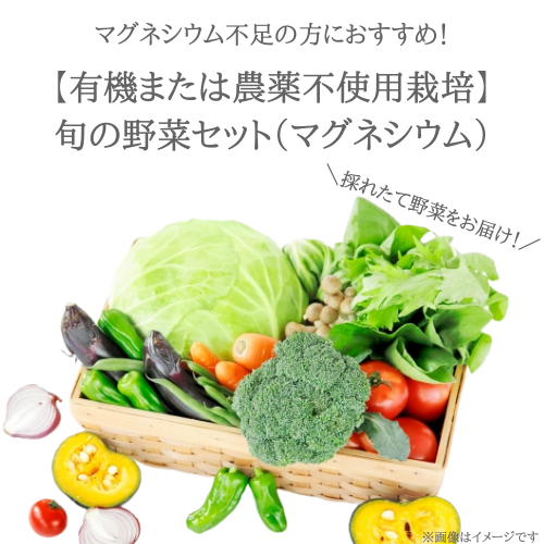 マグネシウム不足の方に! 旬のお野菜セット(Mg)