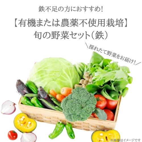 鉄不足の方に!旬のお野菜セット(Fe)