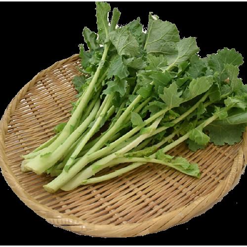 かき菜 ※有機/農薬不使用
