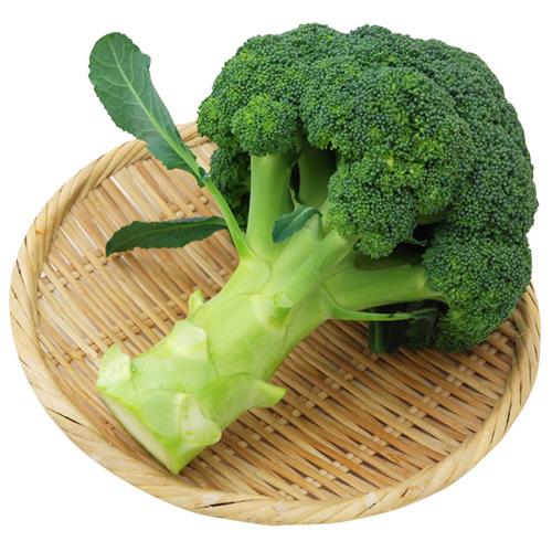 ブロッコリー ※有機/農薬不使用